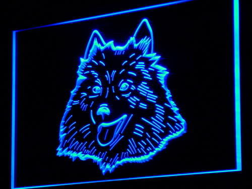 American Eskimo Dog Pet Shop Neon Light Sign