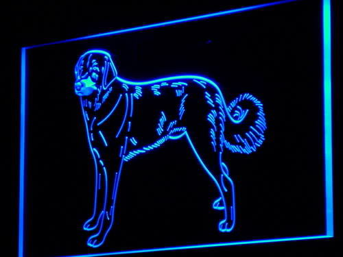 Anatolian Dog Pet Shop Neon Light Sign