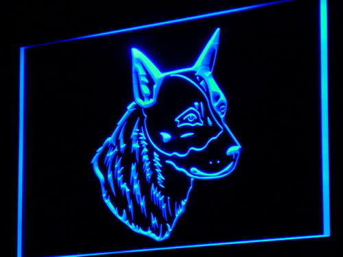 Australian Cattle Dog Shop Neon Light Sign