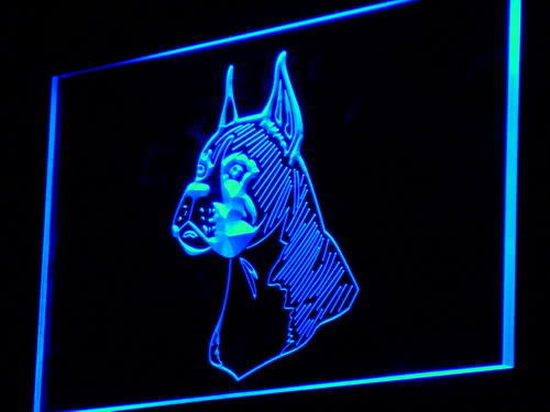Boxer Head Dog Lure Pet Shop Neon Light Sign