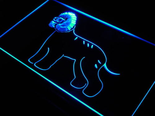 Irish Water Spaniel Dog Pet Shop Neon Light Sign