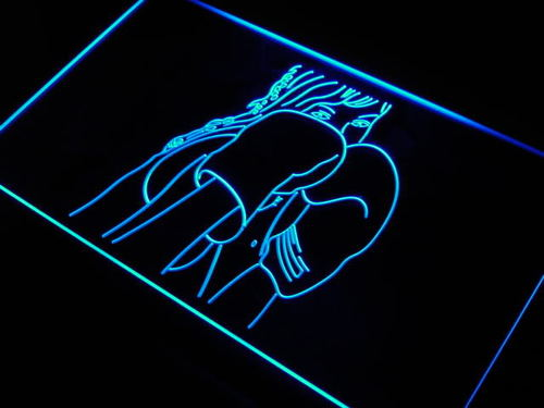 Kick Boxing Fitness LED Sign