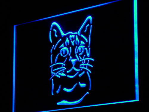 Bengal Cat Pet Shop Breed Gift New Light Sign
