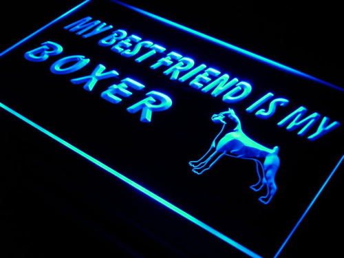 Best Friend Boxer Dog Pet Shop Neon Light Sign