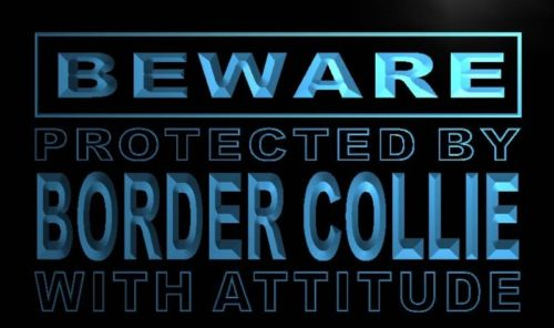 Beware Border Collie Neon Light Sign