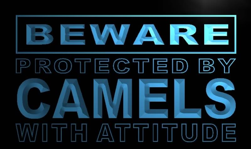 Beware Camels Neon Light Sign