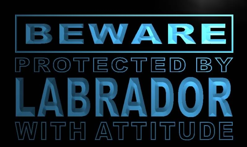 Beware Labrador Neon Light Sign