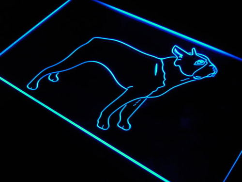 Boston Terrier Dog Pet Shop Neon Light Sign