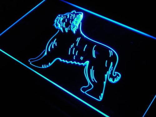 Briard Dog Pet Shop Display Lure Neon Light Sign