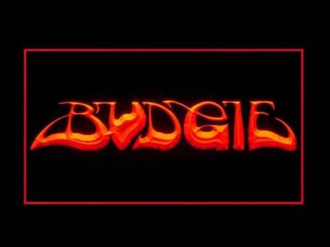 Budgie LED Neon Sign