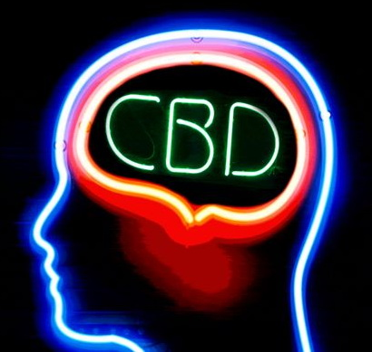 CBD Brain Neon Sign