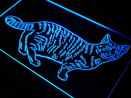 Cat Kitty Home Pet Display Love Neon Light Sign