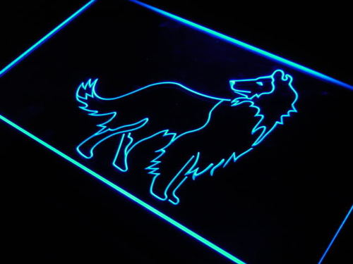 Collie Dog Pet Shop Display Gift Neon Light Sign