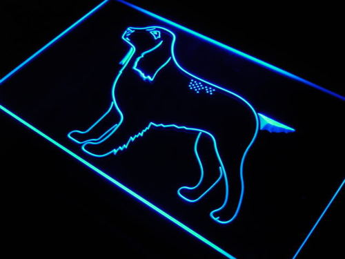Field Spaniel Breed Dog Pet Shop Neon Light Sign