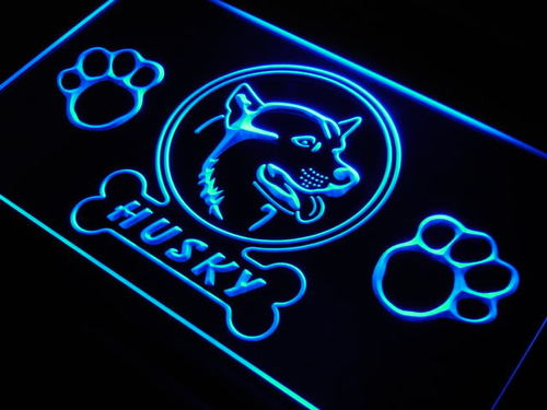 Husky Dog Shop Neon Light Sign