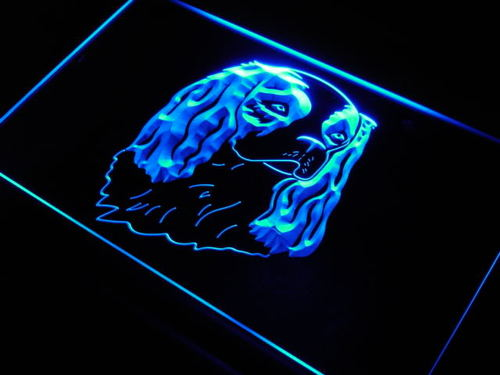 King Charles Cavalier Spaniel Neon Light Sign