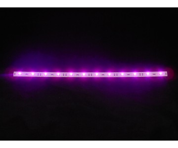 Replacement LED Light set PURPLE