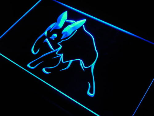 Lancashire Heeler Dog Pet Shop Neon Light Sign