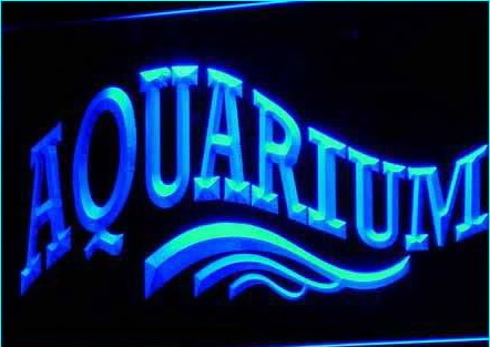 OPEN Aquarium Shop Fish Display Neon Light signs