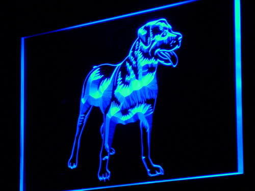 Rottweiler Dog Pet Shop Display Neon Light Sign