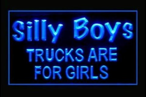 Silly Boys Are For Girls LED Neon Sign