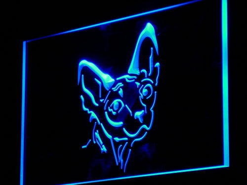 Sphynx Canadian Hairless Cat Shop Light Sign