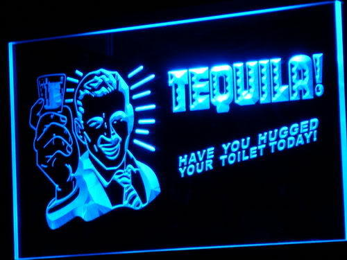TEQUILA Have You Hugged Your Toilet Neon Sign