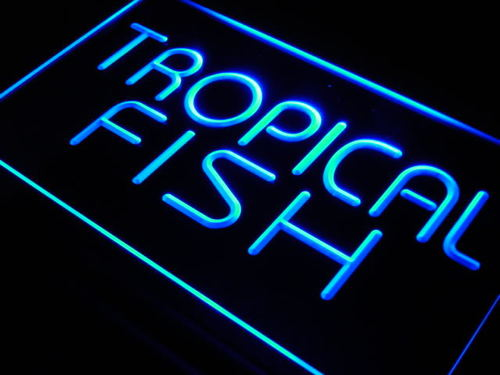 Tropical Fish Shop Display Lure Neon Light Sign