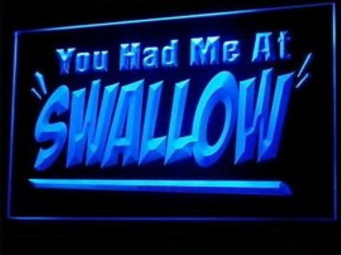 You had me at Swallow LED Neon Sign