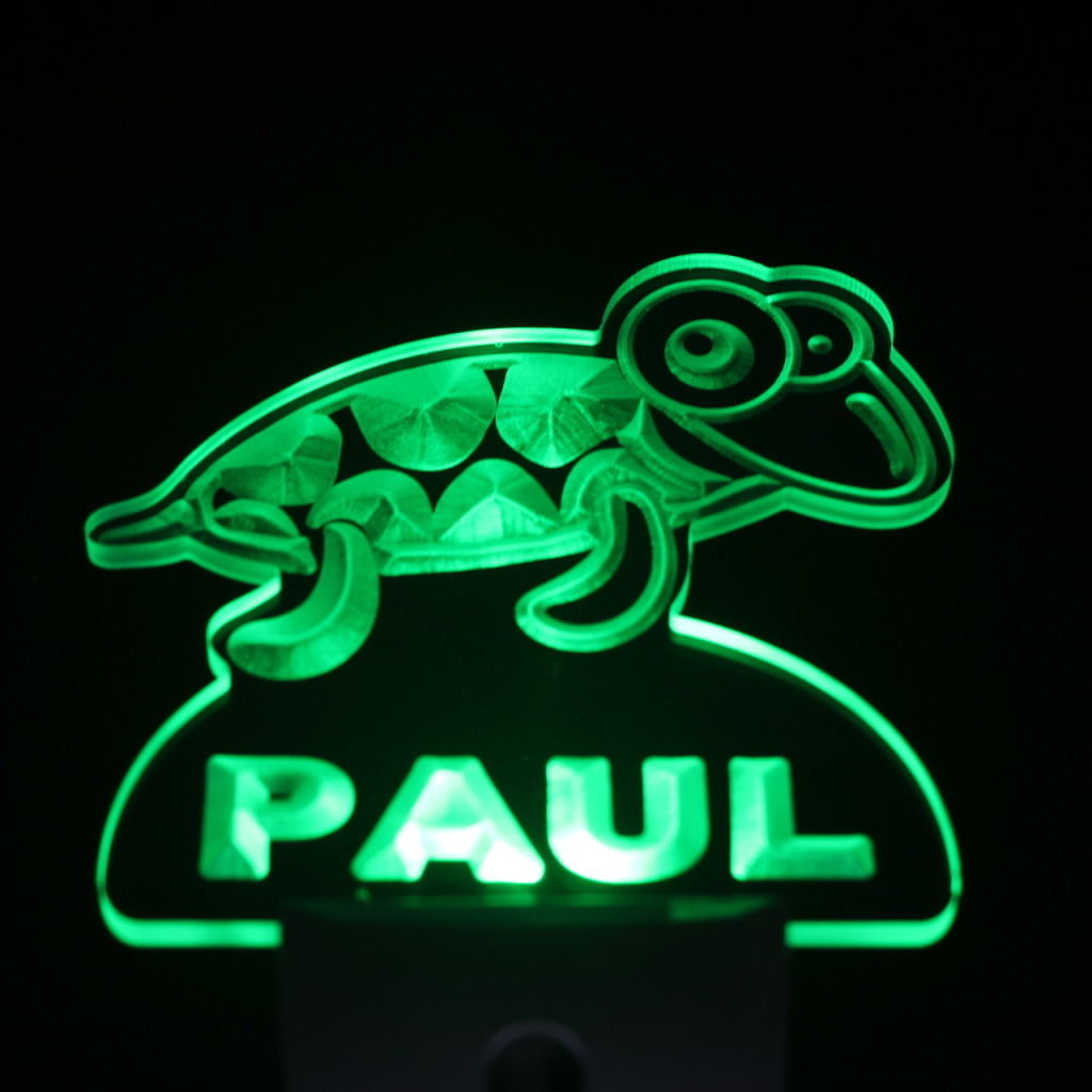 Turtle Personalized Day Night Sensor LED Night Light Green